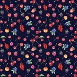 Modèle sans couture avec la framboise, merise, fraise Photos stock