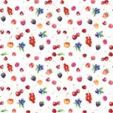 Modèle sans couture avec la framboise, merise, fraise Photographie stock libre de droits