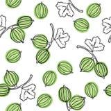 Modèle sans couture avec la groseille à maquereau Illustration de fruit Arbre indien du Malacca de groseille à maquereau, ou gros illustration de vecteur