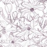Modèle sans couture avec la ligne tirée par la main fleur violette de magnolia Illustration de vecteur illustration de vecteur