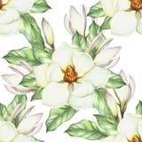 Modèle sans couture avec la magnolia Illustration d'aquarelle d'aspiration de main Image libre de droits