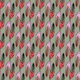 Modèle sans couture avec la plume décorative Illustration de vecteur Photos libres de droits