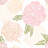 Modèle sans couture avec le bourgeon de fleur et de fleur des pivoines illustration stock
