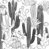 Modèle sans couture avec le cactus Forêt sauvage de cactus illustration libre de droits