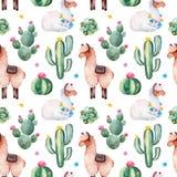Modèle sans couture avec le cactus vert d'aquarelle, les succulents, les fleurs multicolores et les lamas mignons photo libre de droits