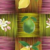 Modèle sans couture avec le citron, chaux, fleurs Images libres de droits