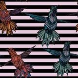 Modèle sans couture avec le colibri Photographie stock libre de droits