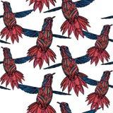 Modèle sans couture avec le colibri et illustration stock
