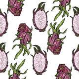 Modèle sans couture avec le dragonfruit ou le pitahaya Images libres de droits