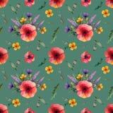 Modèle sans couture avec le pavot rouge et les fleurs jaunes et les herbes de fleurs lilas de bleuets sur un fond vert illustration stock