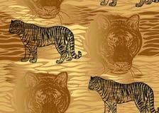 Modèle sans couture avec le tigre, les rayures de fourrure et le plan rapproché principal de tigre illustration libre de droits