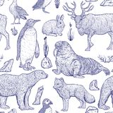 Modèle sans couture avec les animaux arctiques Photographie stock libre de droits