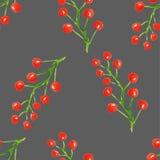 Modèle sans couture avec les baies rouges d'aquarelle abstraite sur un fond gris Photos stock