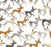 Modèle sans couture avec les cerfs communs galopants Image libre de droits