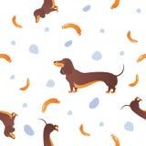 Modèle sans couture avec les chiens et la saucisse Photos libres de droits