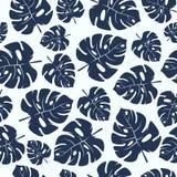Modèle sans couture avec les feuilles tropicales de monstera Image stock