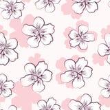 Modèle sans couture avec les fleurs de cerisier roses Photo stock