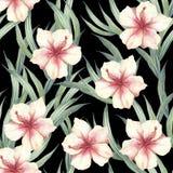 Modèle sans couture avec les fleurs et les feuilles tropicales Illustration d'aquarelle Image stock