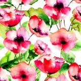 Modèle sans couture avec les fleurs rouges de pavot Photographie stock