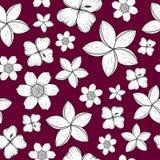 Modèle sans couture avec les fleurs tropicales noires et blanches illustration de vecteur
