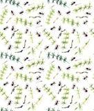 Modèle sans couture avec les fourmis et la queue de cheval Illustration tirée par la main de gouache illustration libre de droits