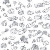 Modèle sans couture avec les légumes tirés par la main Images stock