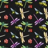 Modèle sans couture avec les libellules, les abeilles et les coccinelles colorées d'aquarelle Photo stock