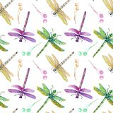 Modèle sans couture avec les libellules colorées d'aquarelle Photos libres de droits