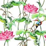 Modèle sans couture avec les lotus et le martin-pêcheur roses illustration libre de droits