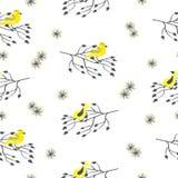 Modèle sans couture avec les oiseaux jaunes mignons d'aquarelle et les branches noires Photo libre de droits