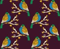 Modèle sans couture avec les oiseaux multicolores Photographie stock