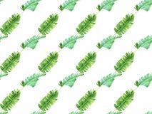 Modèle sans couture avec les palmettes tropicales Photographie stock