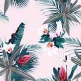 Modèle sans couture avec les plantes tropicales, les paumes et les fleurs exotiques Le vintage colore des plantes tropicales sur  illustration stock
