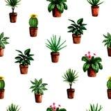 Modèle sans couture avec les plantes vertes de maison peinte à la main d'aquarelle dans des pots pour la conception de papier d illustration libre de droits