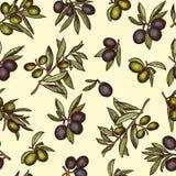 Modèle sans couture avec les produits et la nourriture biologique olives différents Emballage des photos pour le design d'emballa Image stock