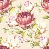 Modèle sans couture avec les roses luxuriantes Illustration d'aquarelle d'aspiration de main Image stock