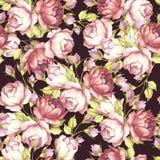 Modèle sans couture avec les roses luxuriantes Illustration d'aquarelle d'aspiration de main Photo libre de droits