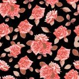 Modèle sans couture avec les roses tirées par la main Photos stock