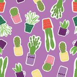 Modèle sans couture avec les succulents verts colorés dans des pots pourpres, jaunes, oranges, roses avec un fond pourpre illustration stock