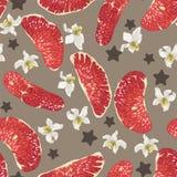 Modèle sans couture avec les tranches, les fleurs et les étoiles rouges d'agrumes illustration stock