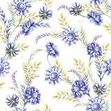 Modèle sans couture avec les wildflowers bleus Illustration d'aquarelle Image libre de droits