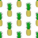 Modèle sans couture avec un ananas, fruit exotique Tiré par la main, illustration de vecteur Images libres de droits