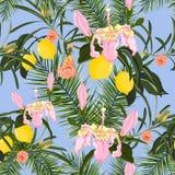 Modèle sans couture bleu de vecteur avec les fleurs tropicales Image stock