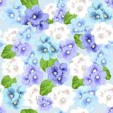 Modèle sans couture botanique avec des fleurs de violettes Photo libre de droits