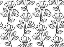 Modèle sans couture botanique, fleurs tirées par la main en noir et blanc illustration libre de droits