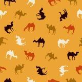Modèle sans couture - chameaux Illustration de Vecteur