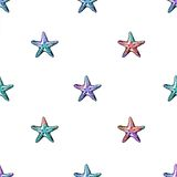 Modèle sans couture coloré d'étoiles de mer exotiques Image stock