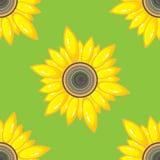Modèle sans couture d'été avec le tournesol Image libre de droits