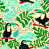 Modèle sans couture d'été tropical Fond avec les oiseaux a de toucan illustration de vecteur