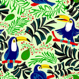 Modèle sans couture d'été tropical Fond avec les oiseaux a de toucan illustration libre de droits